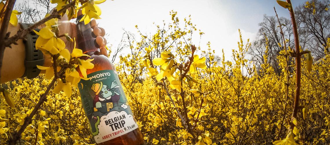 Belgian Trip, a tavasz söre