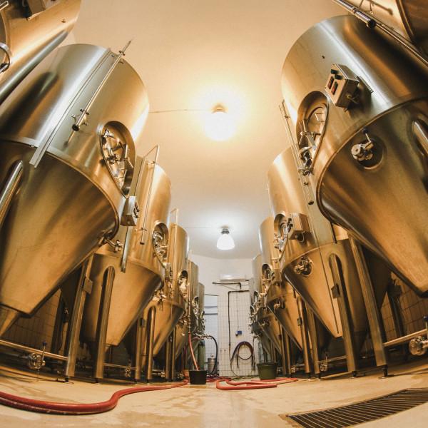 MONYO Brewery pack